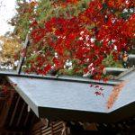 平成28年産ササニシキを奉納 11月23日白石神明社「新嘗祭」
