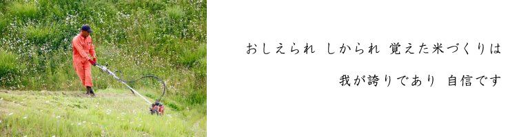 komebito_004
