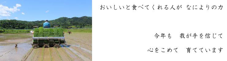 komebito_005