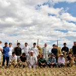 10月 棒がけの自然乾燥米を 大平
