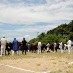 畦かえるsnap 第23回仙南地域和牛共進会