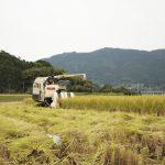 畜産と循環する米づくり 夫婦初めてのササ収穫へ