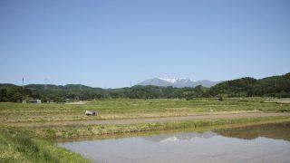 高温の5月下旬 福岡
