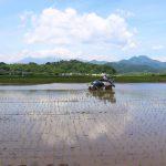 プロジェクト5年目 今年も旨い米を 白石・白川